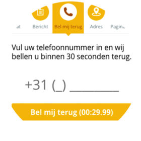 Pyber CRM - call to action chat widget 003